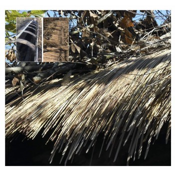 Camo Systems Speed Reed Synthetic Grass Panels. Size 24